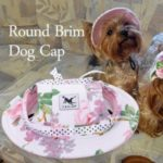 TAILUP Round Brim Dog Cap Pet Hat Mesh Prorous Sun Cap with Ear Holes for Small Dogs Puppy – Style 5