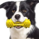 Dumbbell Bone Dog Puppy Chew Toy Tooth Cleaning Pet Toys – Yellow